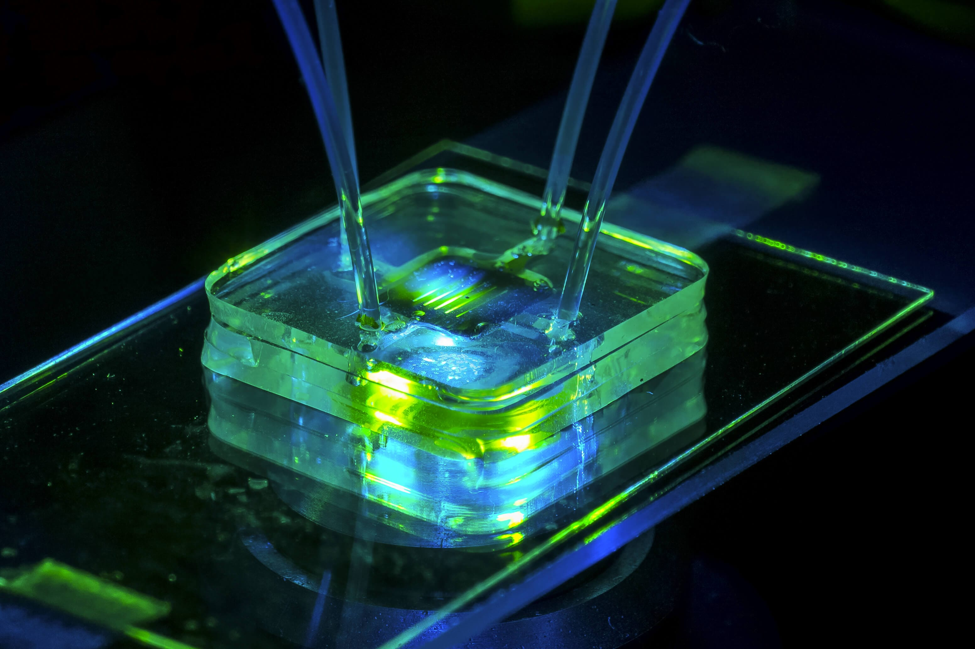 Materials for Microfluidic Chips Fabrication