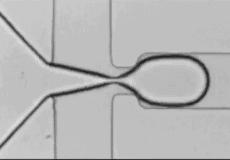 microfluidic droplet on demand