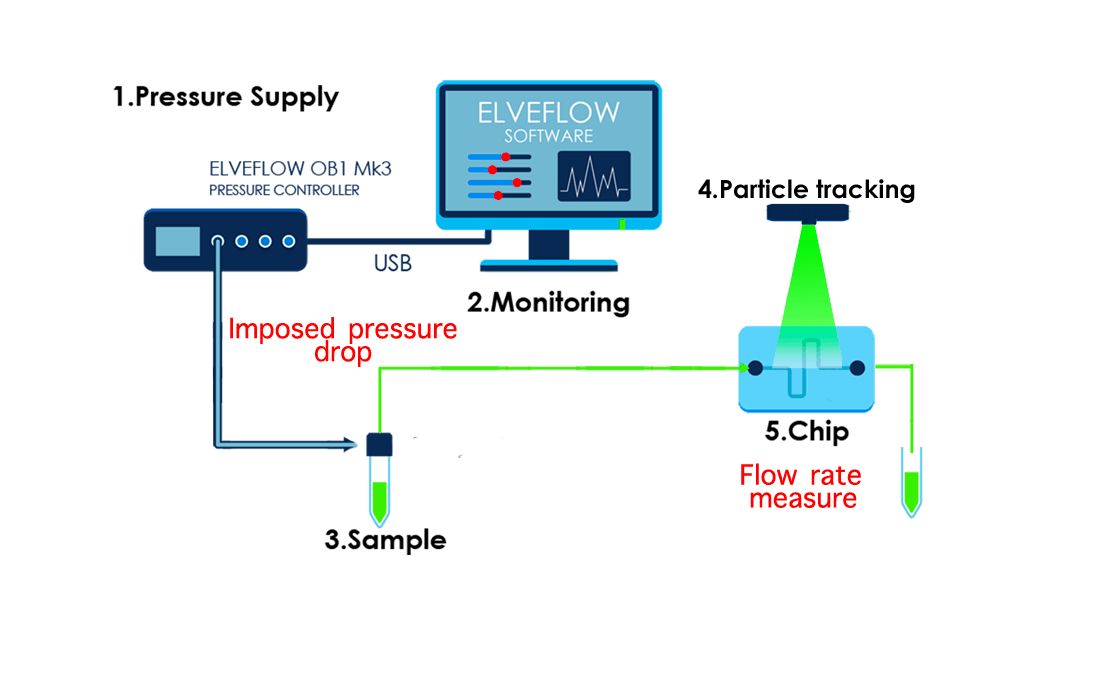 Pressure-drop-monitoring-flow-rate-measure-microrheology-rheology-microfluidics-rheometer-rheometry