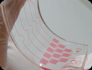 microfluidic biocompatible Polymer organ on chip