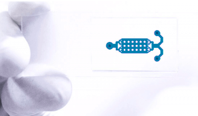 soft-lithography-SU-8-PDMS-microfluidic-chips