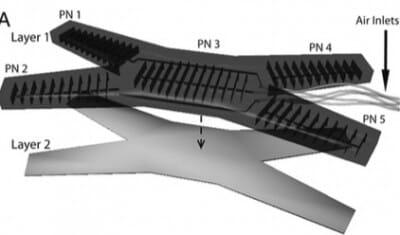 Microfluidic soft robot Multigait 1