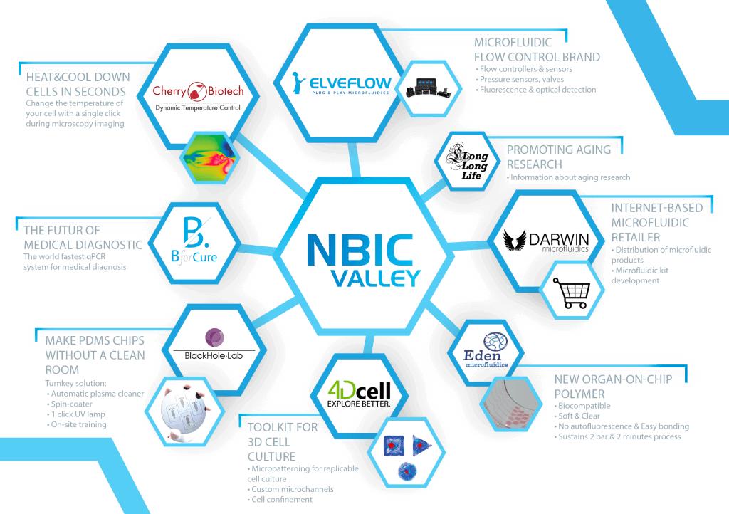 NBIC Valley - developed