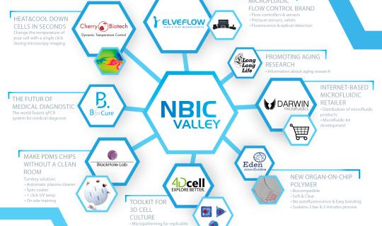 NBIC valley