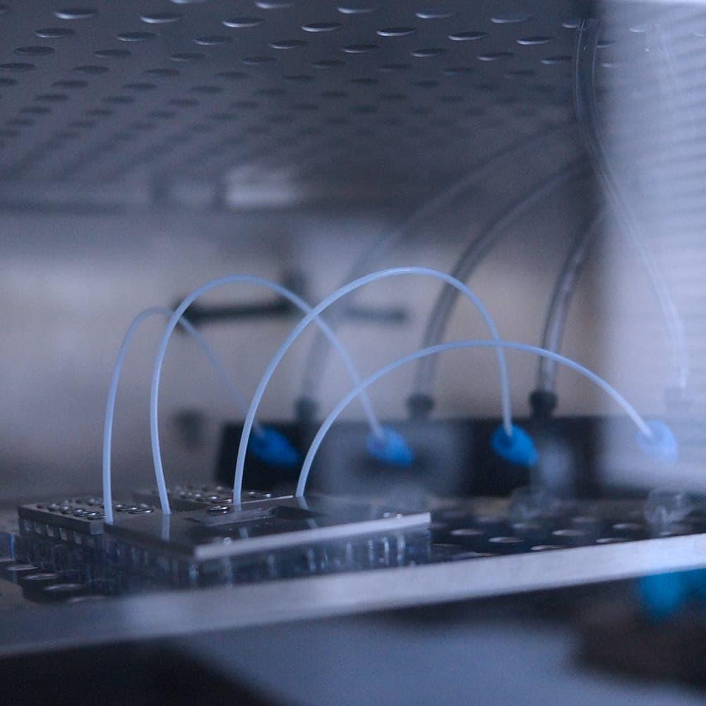 Pack--systeme-incubateur-chip-inside-Elveflow-Darwin-microfluidicsorganic incubator