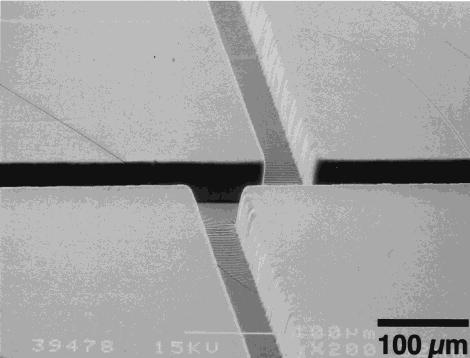 SEM PDMS-History Microfluidics-Elveflow-Startup-Innovation-Technology