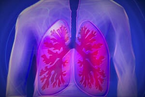 MECH-LoC_organ-on-chip_lung-on-chip-Elvesys-Lung