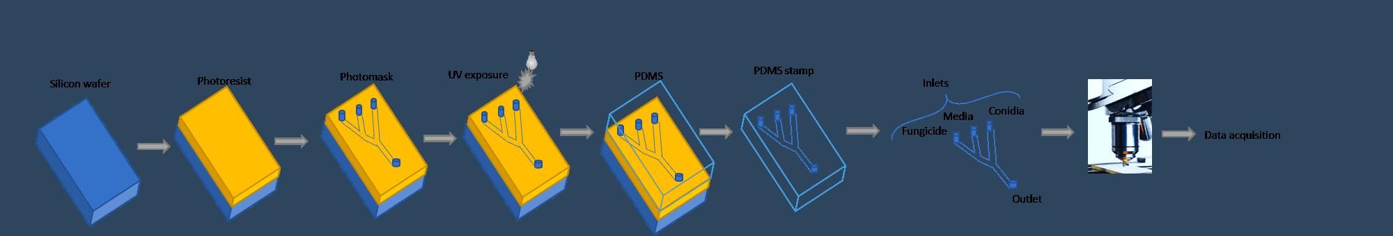 MAHT-FunSST_lab-on-chip_screening-Elvesys-chip