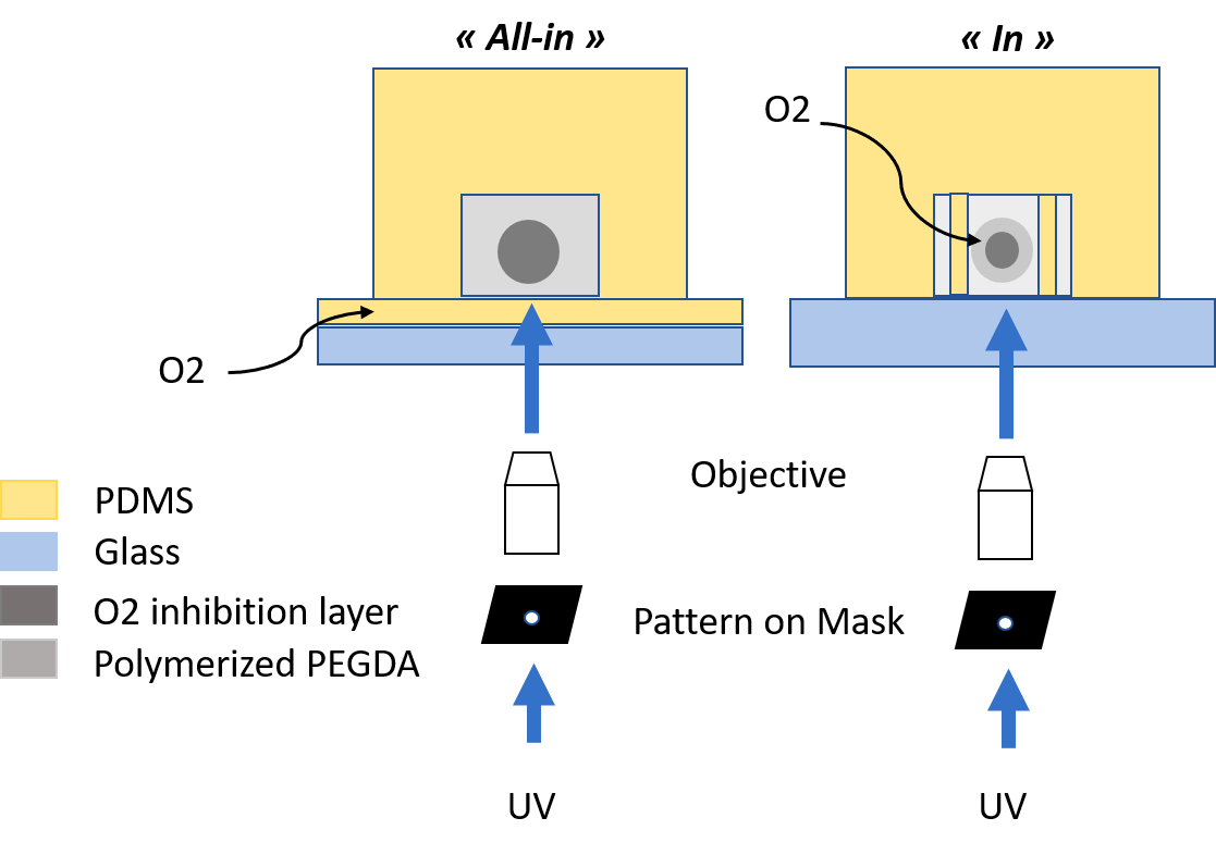 "Fig.1 Combination of in-flow photolithography and droplet-based microfluidics. 2 configurations ""all-in"" and ""in"" PDMS configurations."
